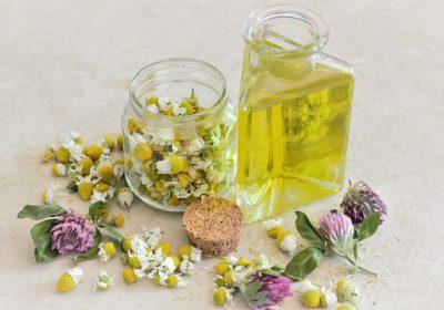 Das Kamillenöl der Echten Kamille wird aus der Kamillenblüte gewonnen